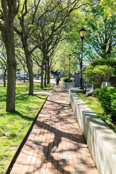 Memorial Park Pathway, 2017