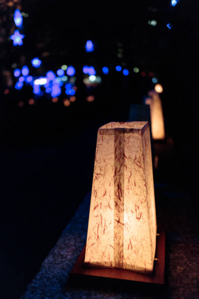 Luminaria in Memorial Park