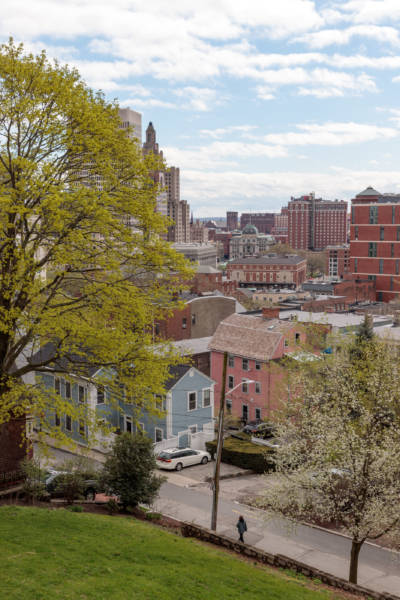 Spring Afternoon from Prospect Terrace, 2019