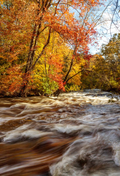 Fall on the Ten Mile River, 2018