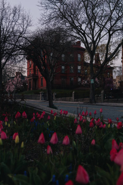 A Spring Evening Walk on College Hill, 2021